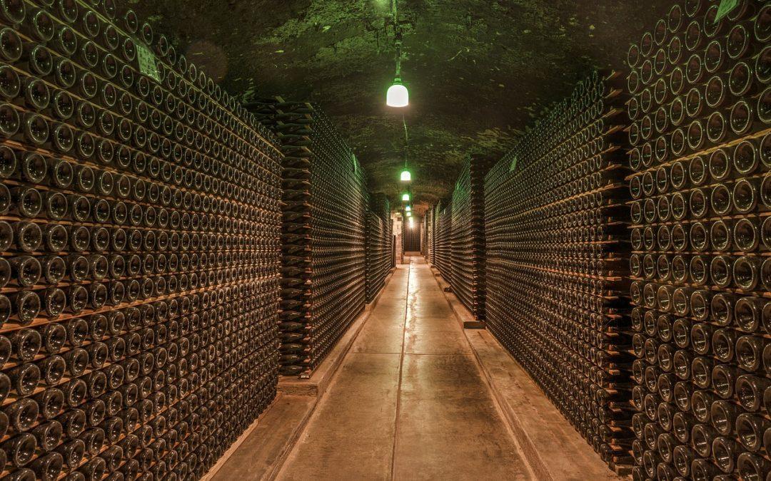 Cave à vin enterrée : Pourquoi construire une cave à vin enterrée ?