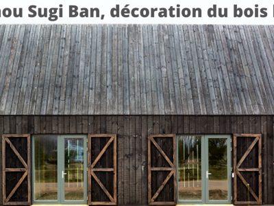 Le Shou Sugi Ban, la décoration du bois brûlé