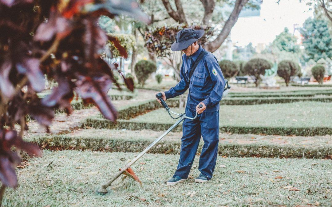 4 raisons pour lesquelles il vaut la peine d'engager un jardinier paysagiste pour concevoir le jardin de vos rêves